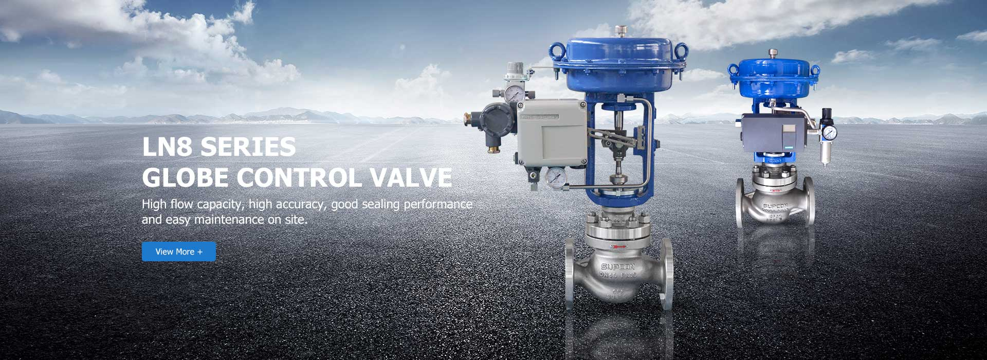 Globe Control Valve