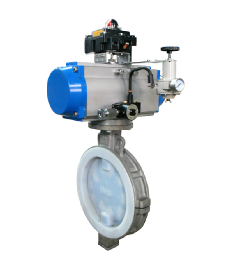BN1101F Plastic Lined Butterfly Valve